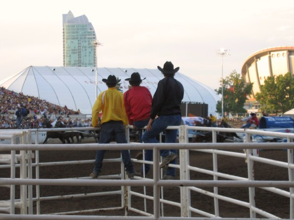 This is what real cowboys look like from behind...