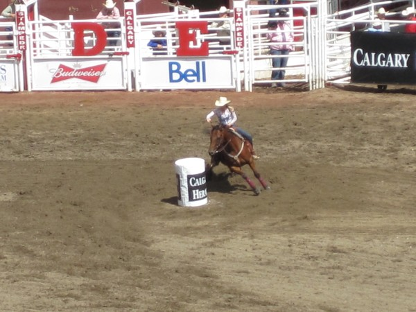 Barrel racing at the Stampede